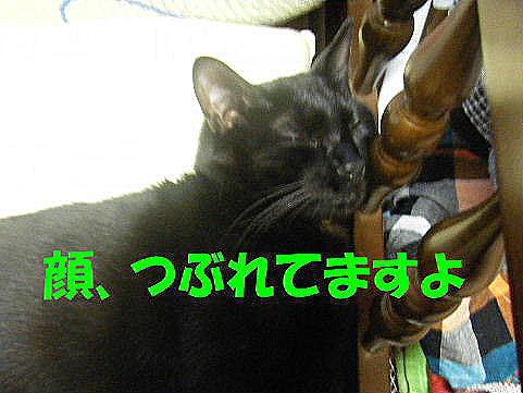 2011_05250023.jpg