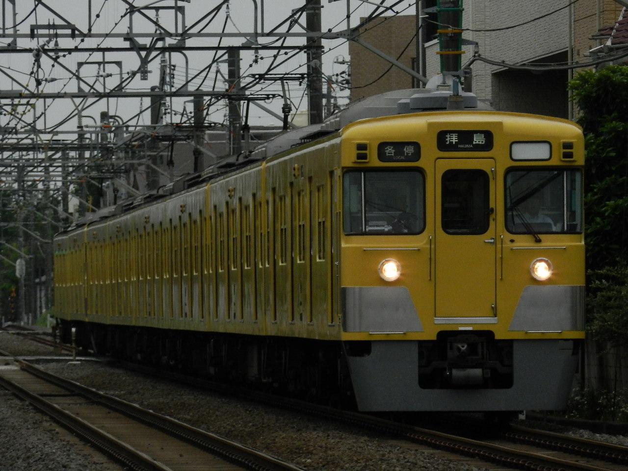 DSCN5303.jpg