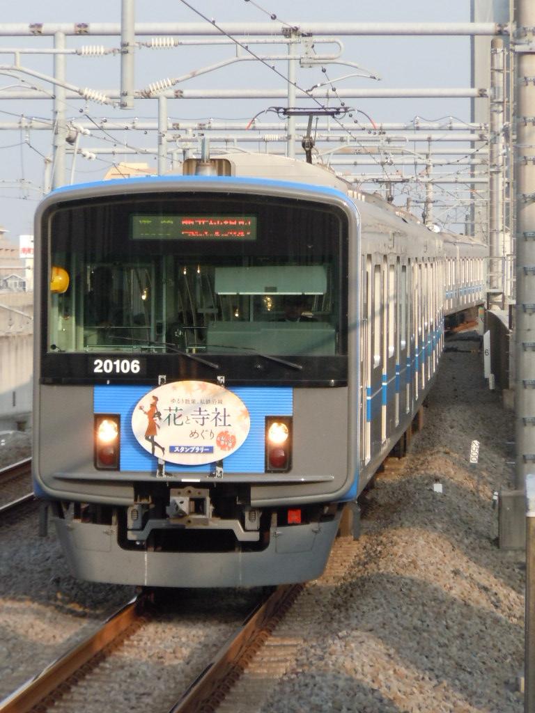 DSCN6528.jpg