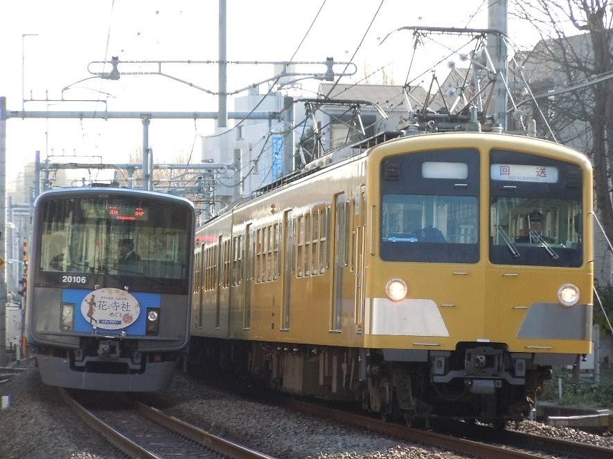 DSCN7398.jpg