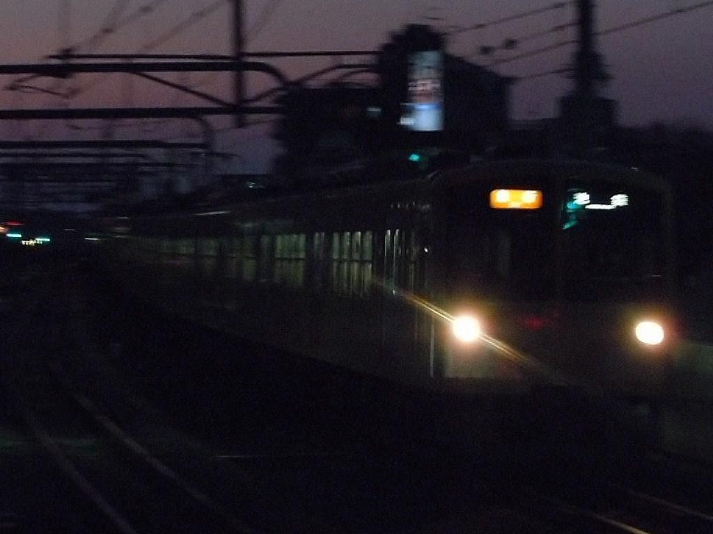 RSCN7457.jpg