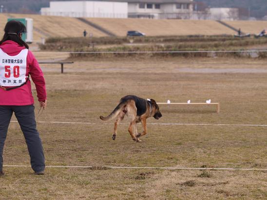 0223s犬5