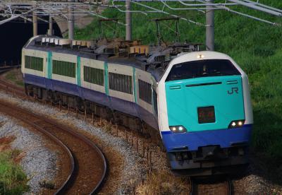 IMGP9956 (2)