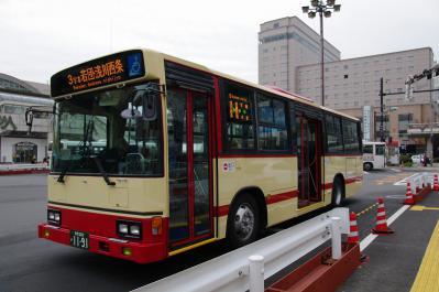 IMGP2654.jpg