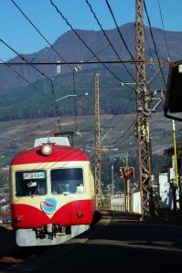 IMGP3009.jpg