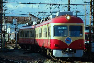 IMGP3527.jpg