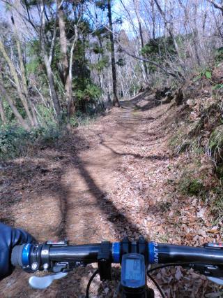 石森山トレイル・10