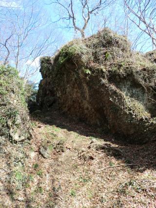 石森山トレイル・14