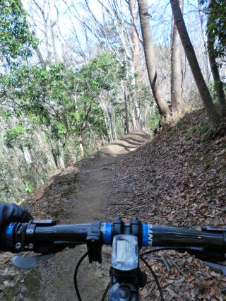 石森山トレイル・16