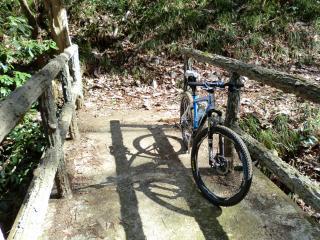 石森山トレイル・17