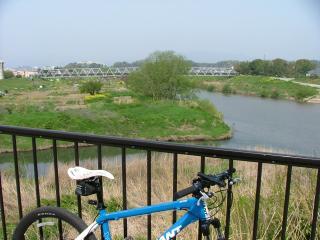 水道橋の反対岸から