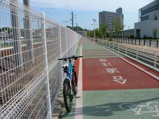 完全に歩道と分断された自転車道