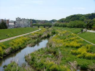 春香る新川