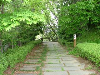 丹後沢への道