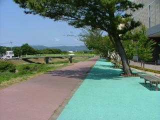 堤防上の自転車道?