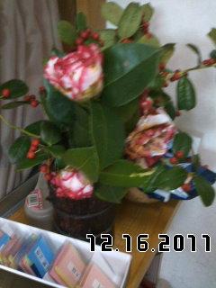PA0_0023_20120129104149.jpg