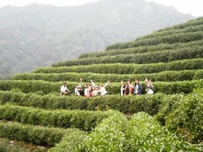 10期 茶芸師ツアー