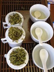 12期茶芸師