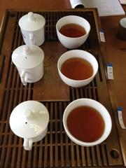 12期茶芸師2