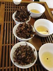 12期茶芸師4
