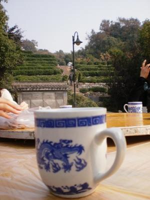 12期茶芸師ツアー 龍井茶園のお食事