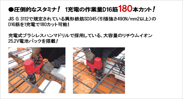 pj-rc161-bc_t02.jpg