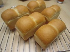 みに食パン