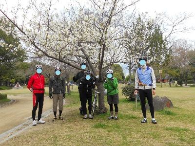 集合3/23桜