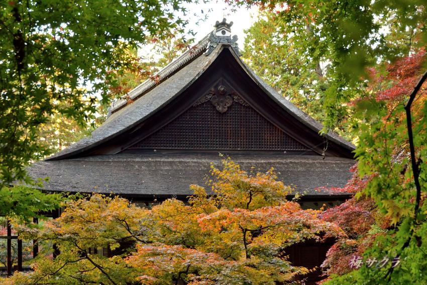 京都4(3)変更済