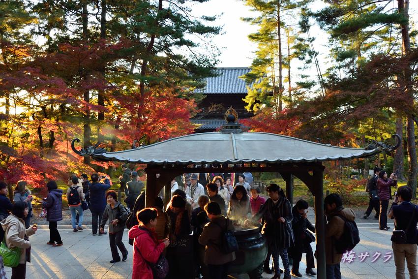 京都5(5)変更済