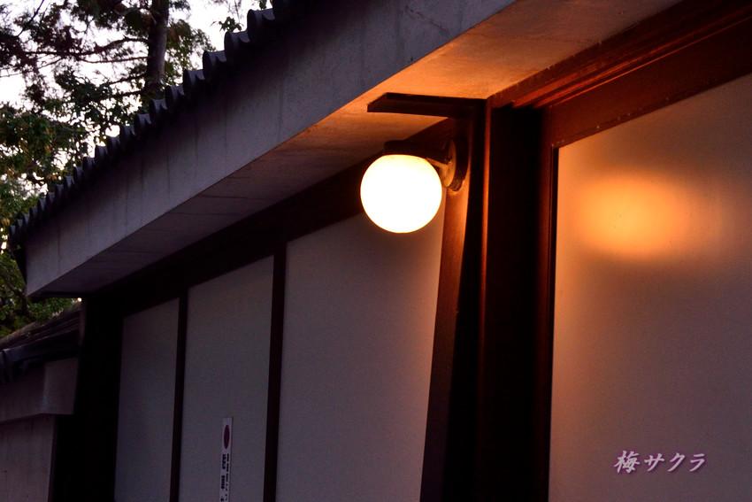 京都5(10)変更済