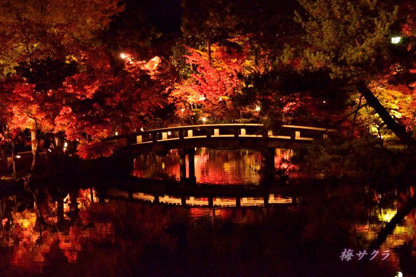 京都6(5)変更済