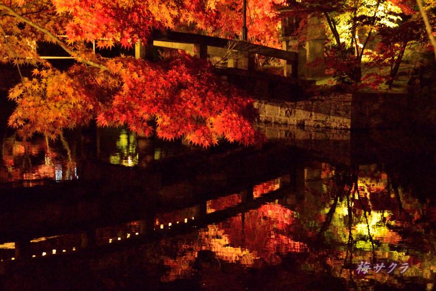 京都6(6)変更済