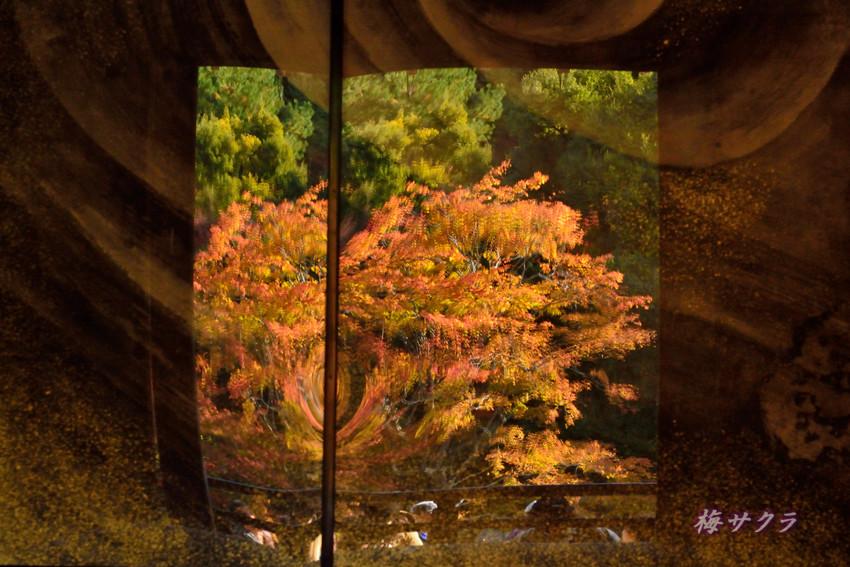 京都7(9)変更済