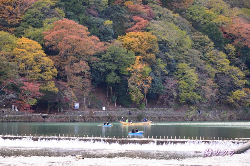 京都8(4)変更済