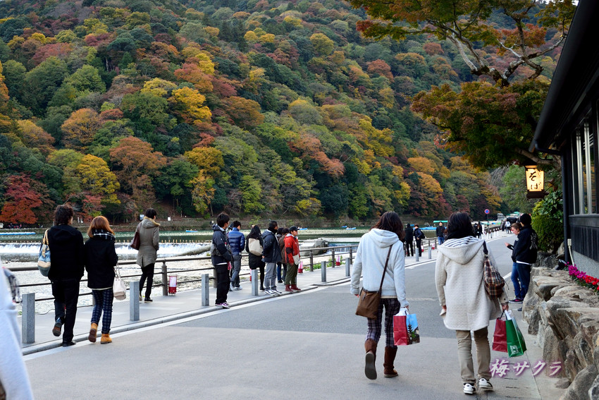 京都8(8)変更済