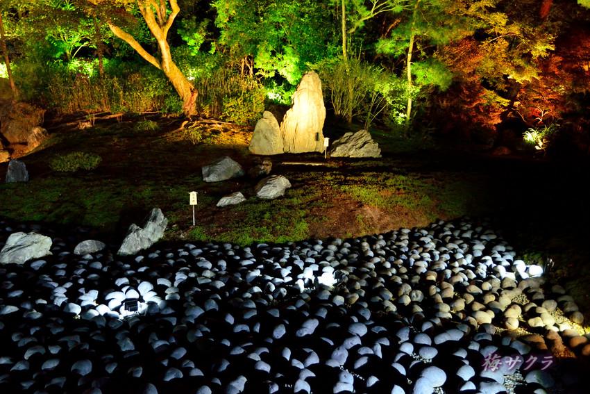 京都9(3)変更済