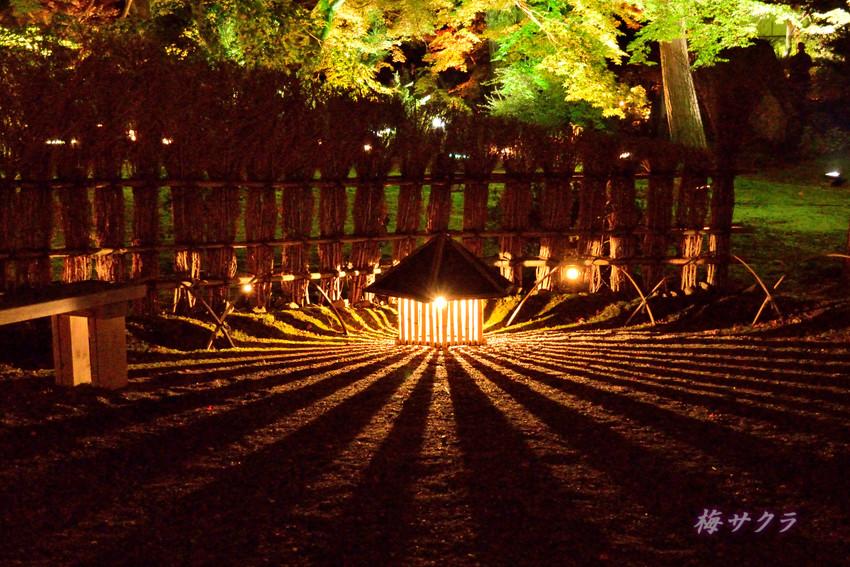 京都10(12)変更済
