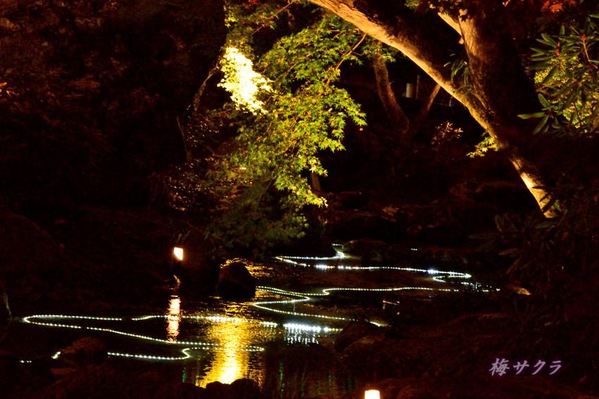 京都9(10)変更済