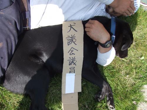 2006_0929縺ゥ繧牙、芽コォ・・シ・譛・9譌・0007_convert_20100412213537
