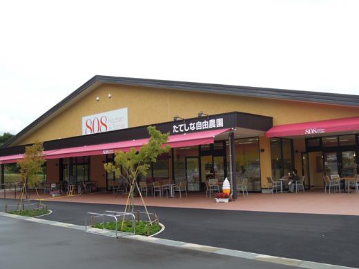 DSCN4379t.jpg