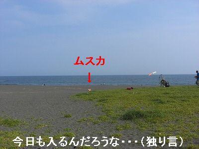 CIMG5728.jpg
