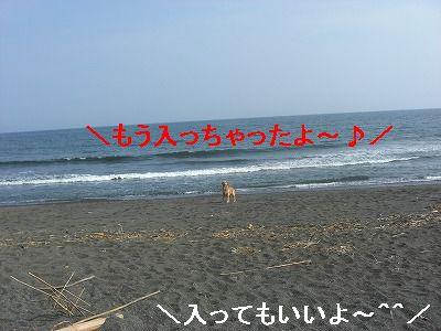 CIMG5733.jpg