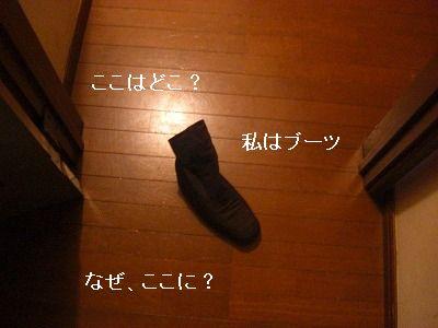 CIMG5941.jpg