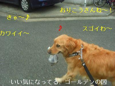 CIMG6446.jpg