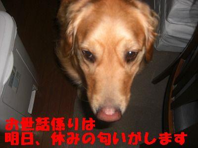 CIMG6646.jpg