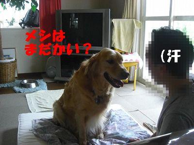 CIMG6675.jpg