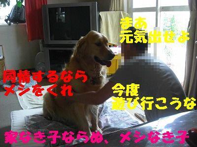 CIMG6677.jpg
