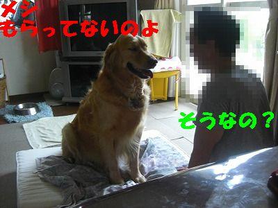 CIMG6678.jpg