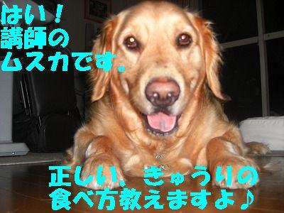 CIMG6777.jpg